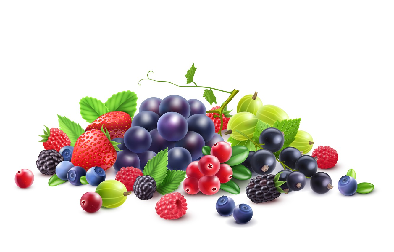 Photo wallpaper berries, raspberry, blueberries, strawberry, grapes, white background, currants, gooseberry, vector graphics, cranberries
