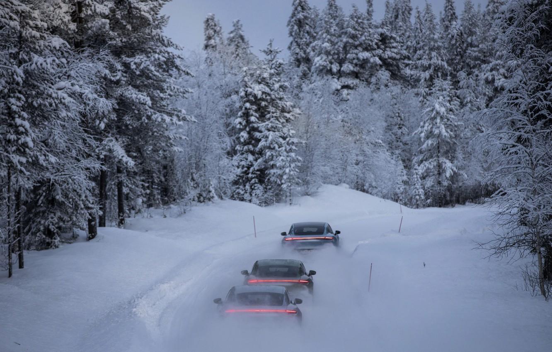 Photo wallpaper forest, snow, movement, Porsche, back, 2020, Taycan, Taycan 4S