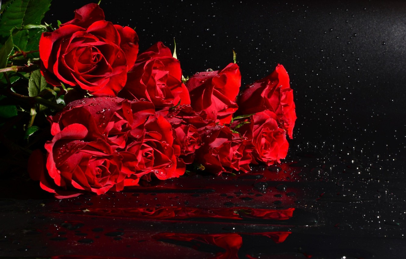 Wallpaper Drops Roses Bouquet Black Background Red Roses Images For Desktop Section Cvety Download