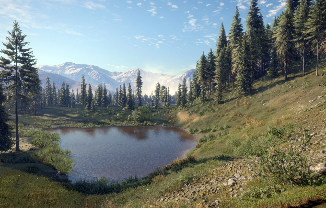 Photo wallpaper game, Expansive Worlds, thehunter call of the wild