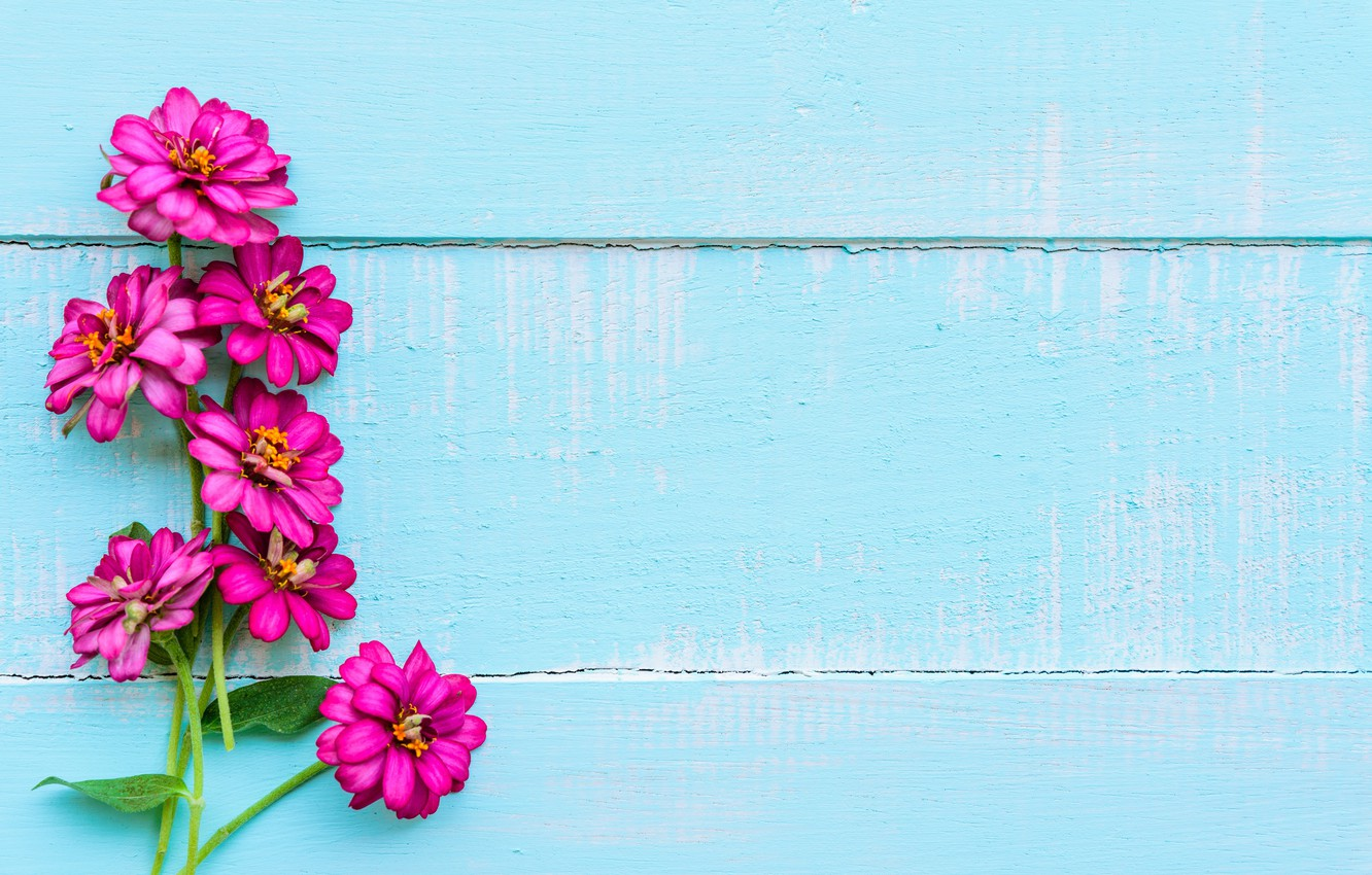 Wallpaper Flowers Background Wood Blue Flowers Purple Images