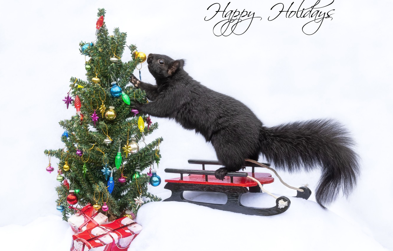 Photo wallpaper protein, Christmas, gifts, white background, New year, tree, sled