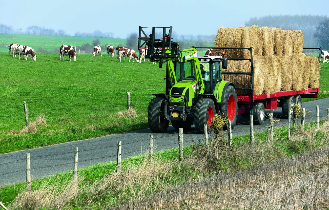 Photo wallpaper hay, tractor, the trailer, the herd, Claas, Arion 400