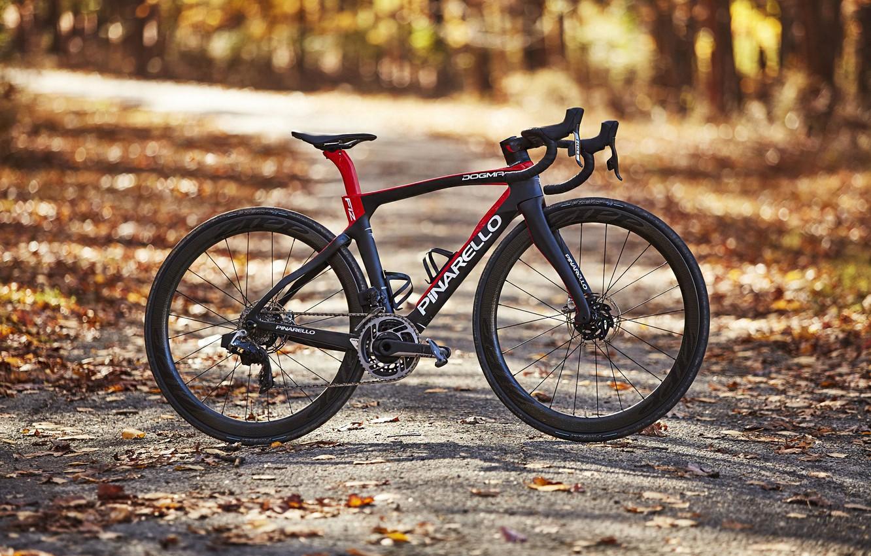 Photo wallpaper autumn, bike, sport, bike, bicycle, Carbon, Sport, road, Love on the Bike, Pinarello, procycling, Pinarello …