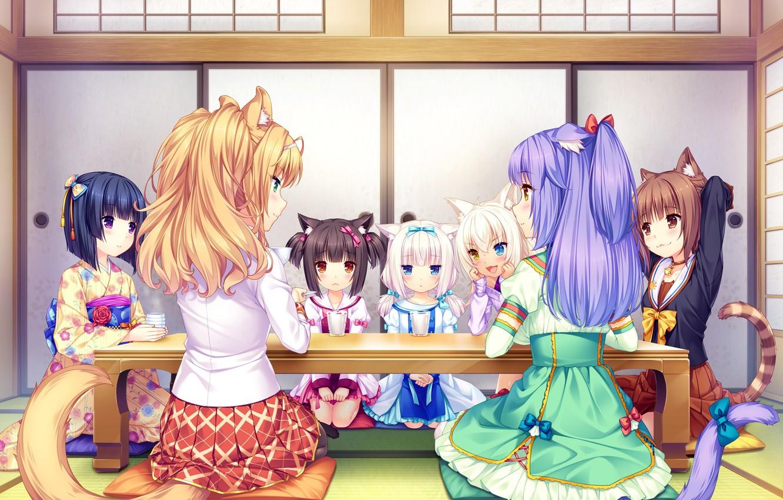 Photo wallpaper Table, Girls, Tea, Nekopara