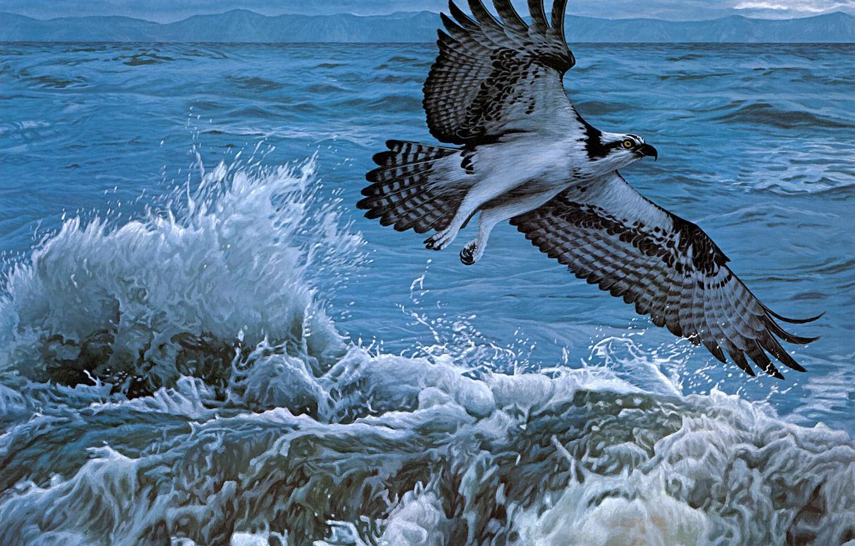 Photo wallpaper sea, wave, water, flight, squirt, storm, bird, figure, graphics, picture, art, painting, hawk, predatory, osprey, …