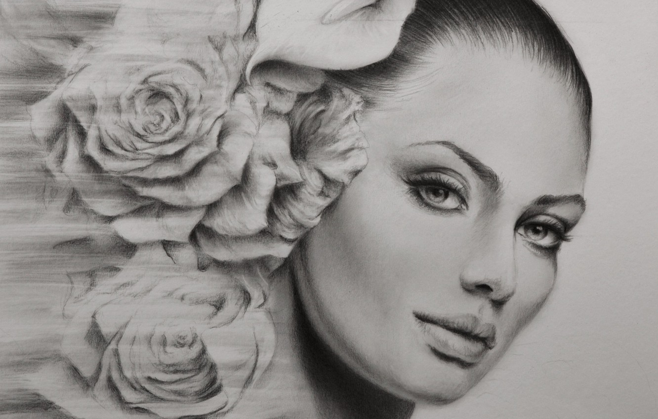 Photo wallpaper look, girl, portrait, roses, painting, picture a simple pencil