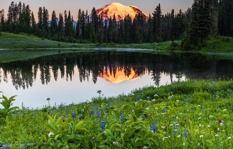 Photo wallpaper trees, landscape, sunset, mountains, nature, lake, reflection, stones, USA, reserve, National Park, Mount Rainier, Mount …