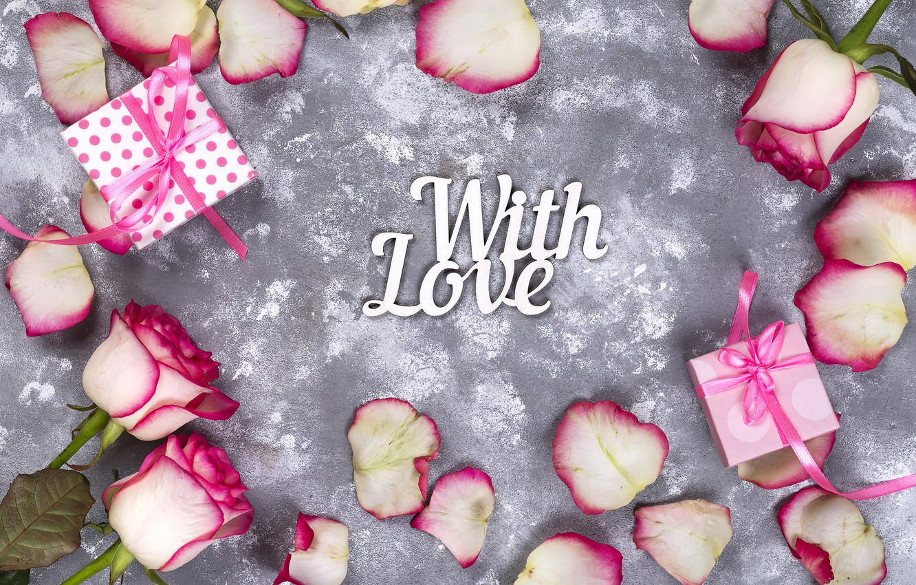 Photo wallpaper flowers, gift, roses, petals, love, pink, white, pink, flowers, beautiful, romantic, valentine's day, petals, roses, …