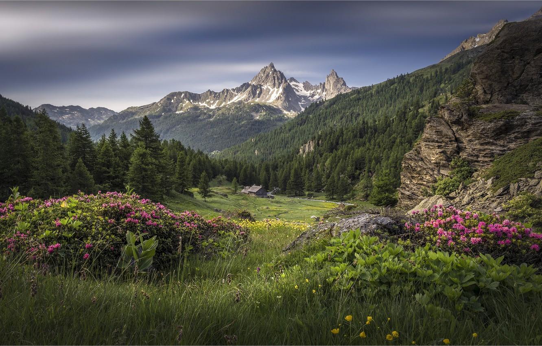 Photo wallpaper mountains, France, Alps, France, Array De SERS, The Hautes-Alpes