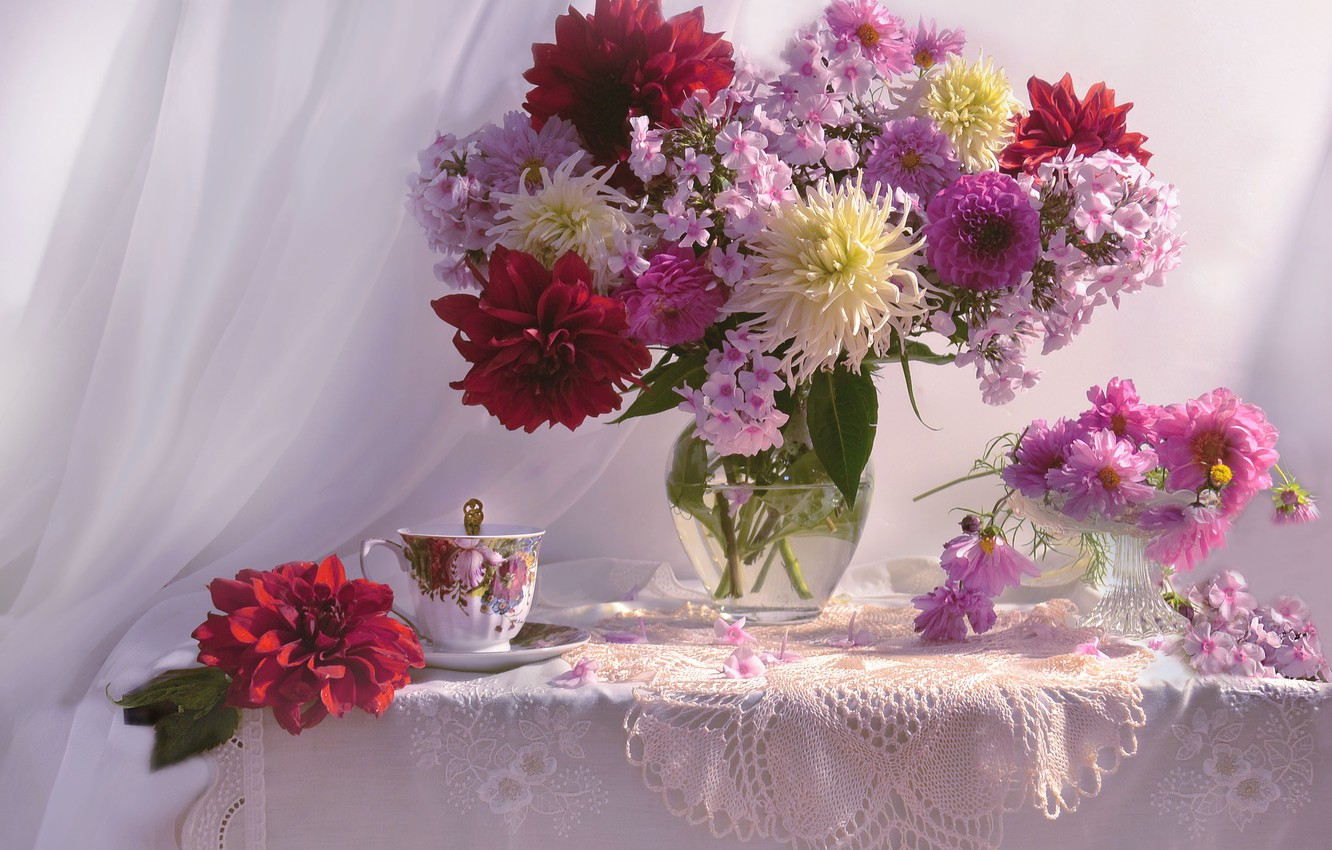Photo wallpaper flowers, table, Cup, vase, curtain, napkin, vase, kosmeya, Phlox, dahlias, Valentina Fencing