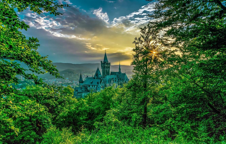Photo wallpaper trees, castle, Germany, Wernigerode, Wernigerode Castle