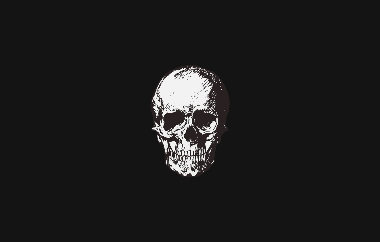 Photo wallpaper simple, skull, minimalism, sake, black background, minimalism, Black background