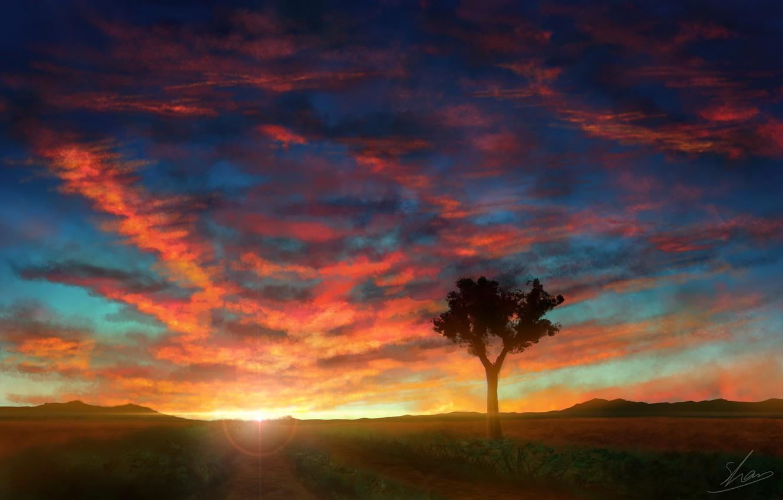 Photo wallpaper the sky, sunset, nature, tree