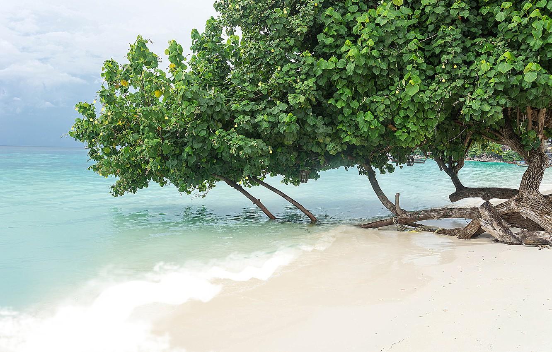 Photo wallpaper sand, sea, wave, beach, summer, summer, beach, sea, blue, seascape, sand, wave, tropical