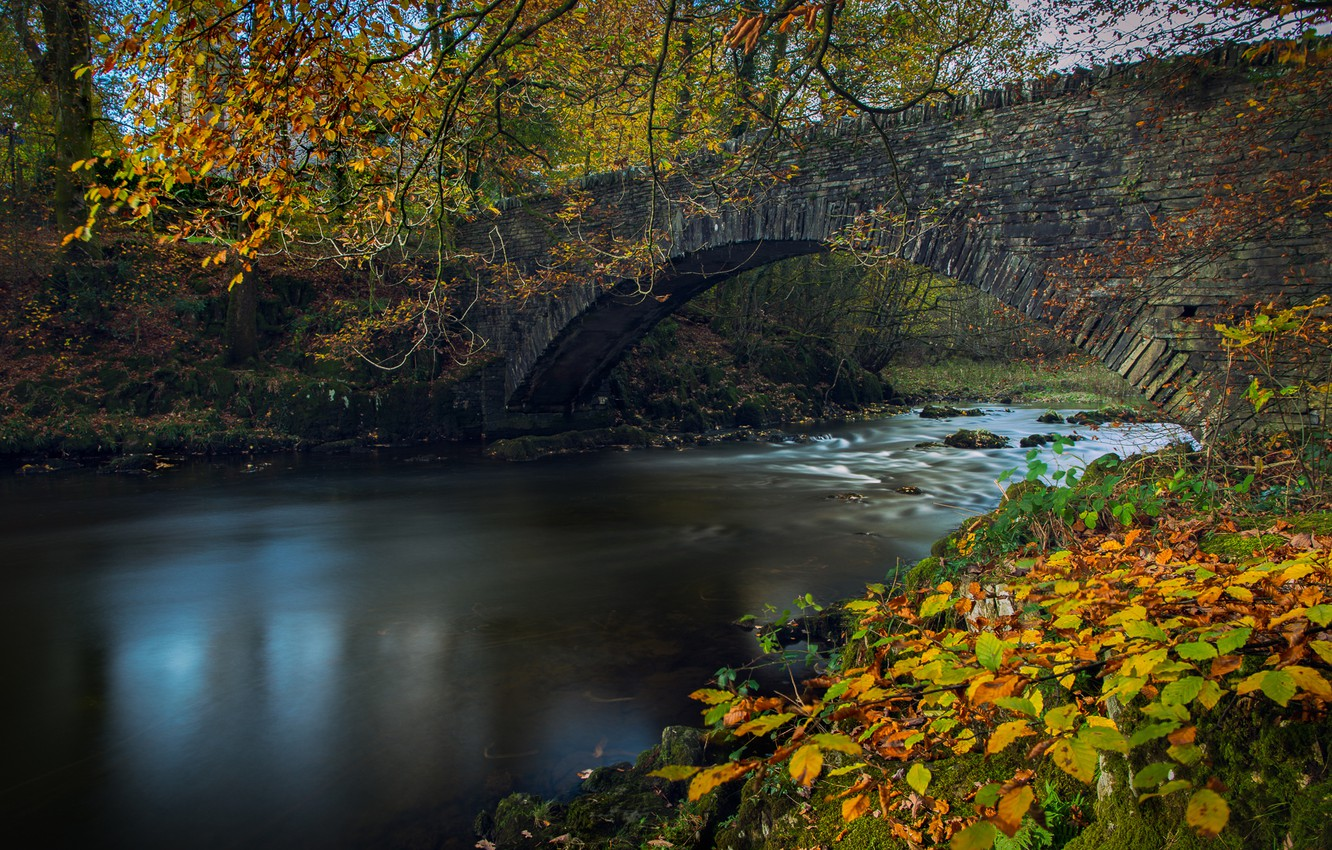 Photo wallpaper autumn, leaves, branches, bridge, river, England, England, The lake district, Lake District, Cumbria, River Brathay, …