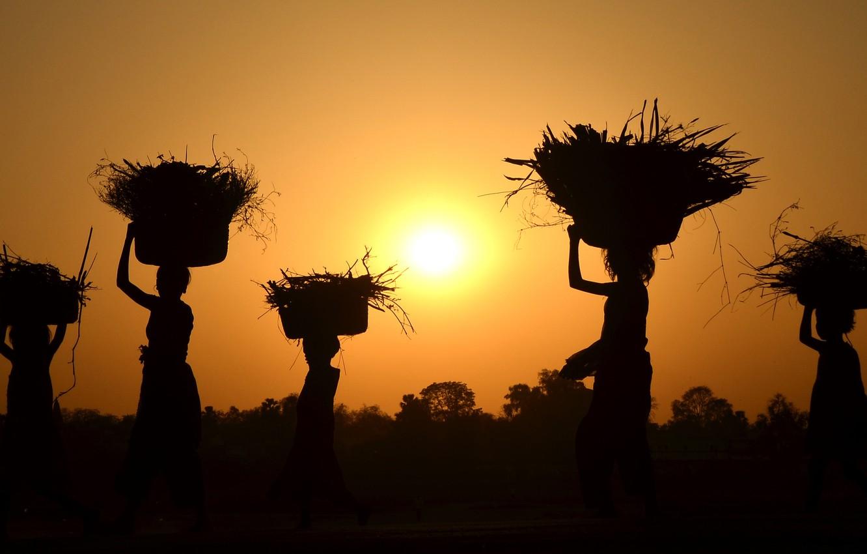 Photo wallpaper sunset, women, harvest