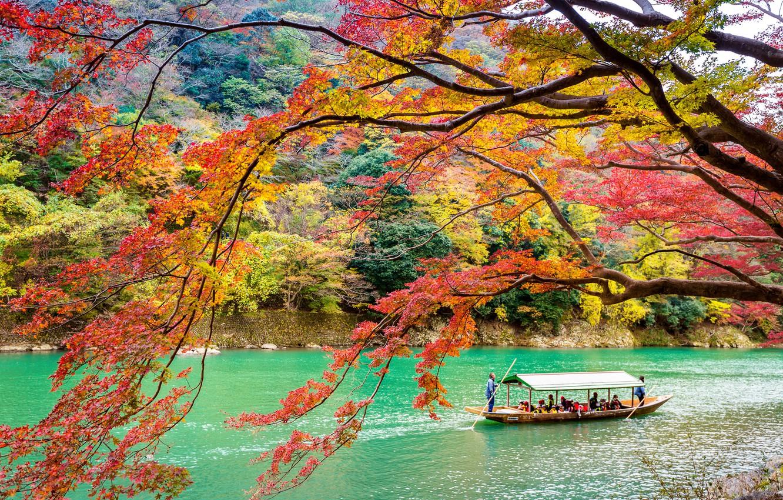 Photo wallpaper autumn, leaves, trees, Park, Japan, Kyoto, nature, park, autumn, lake, leaves, tree, Arashiyama