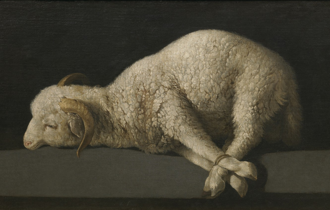 Photo wallpaper The Lamb Of God, Francisco de Zurbaran, 1635-1640