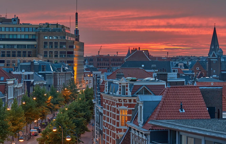 Photo wallpaper Netherlands, Holland, Haarlem