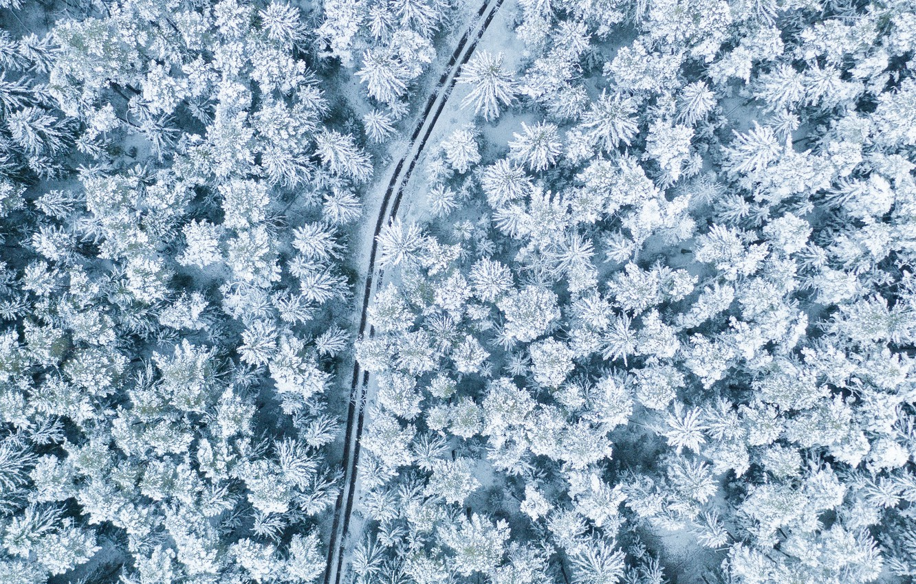Photo wallpaper winter, road, forest, snow, trees, landscape, nature, the view from the top
