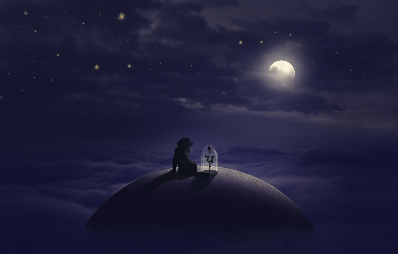 Photo wallpaper flower, stars, clouds, dog, The moon, moon, flower, dog, clouds, stars, little prince, The Little …