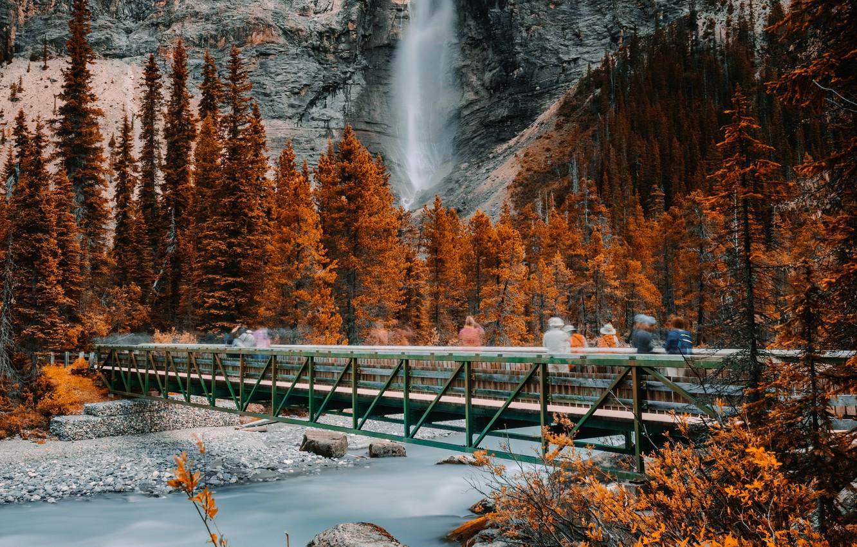 Wallpaper Rock Canada River Trees Nature Bridge Autumn