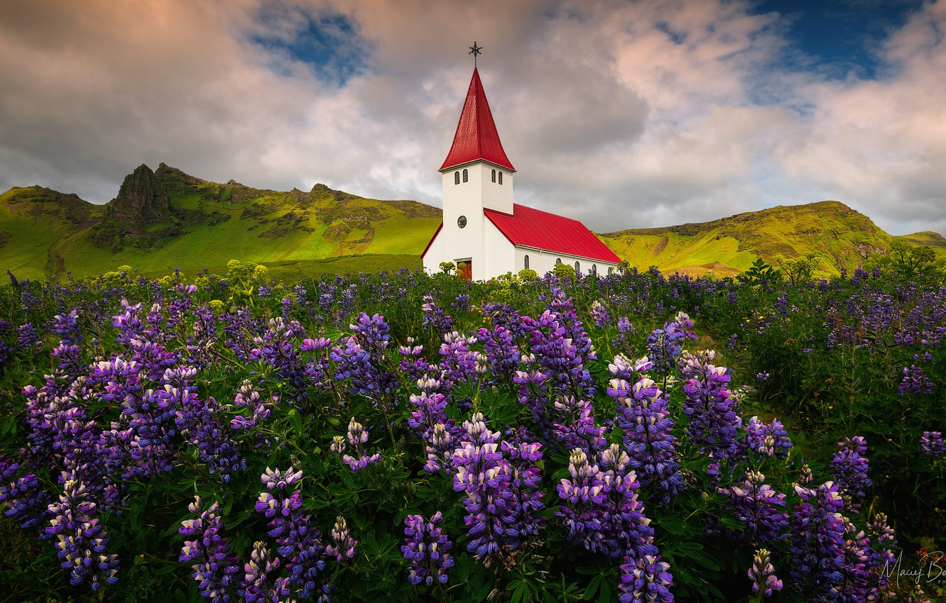 Photo wallpaper field, clouds, landscape, flowers, mountains, nature, village, Norway, Church, lupins, Vic, Eugene Bartnicki