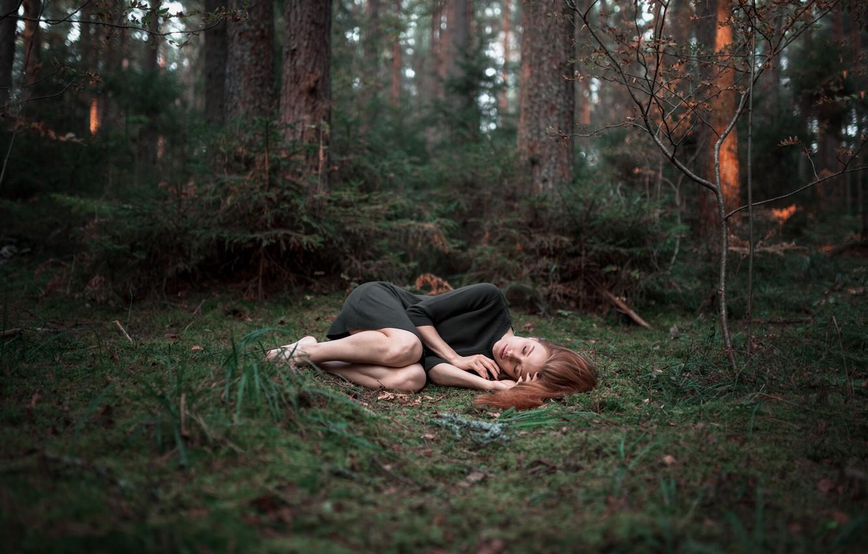 Photo wallpaper forest, girl, sleep, Alexander Kurennoy