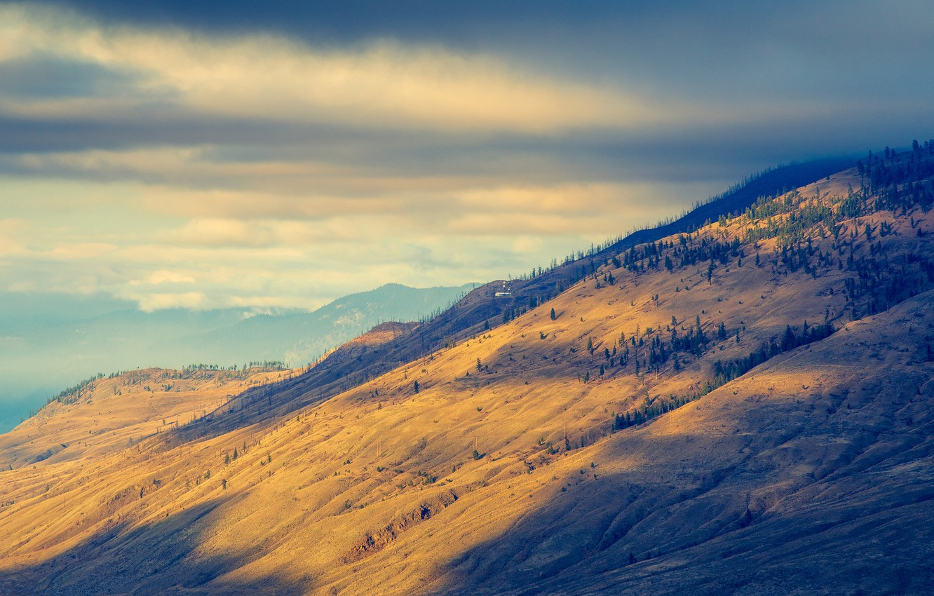 Photo wallpaper forest, the sky, clouds, light, mountains, ate, slope