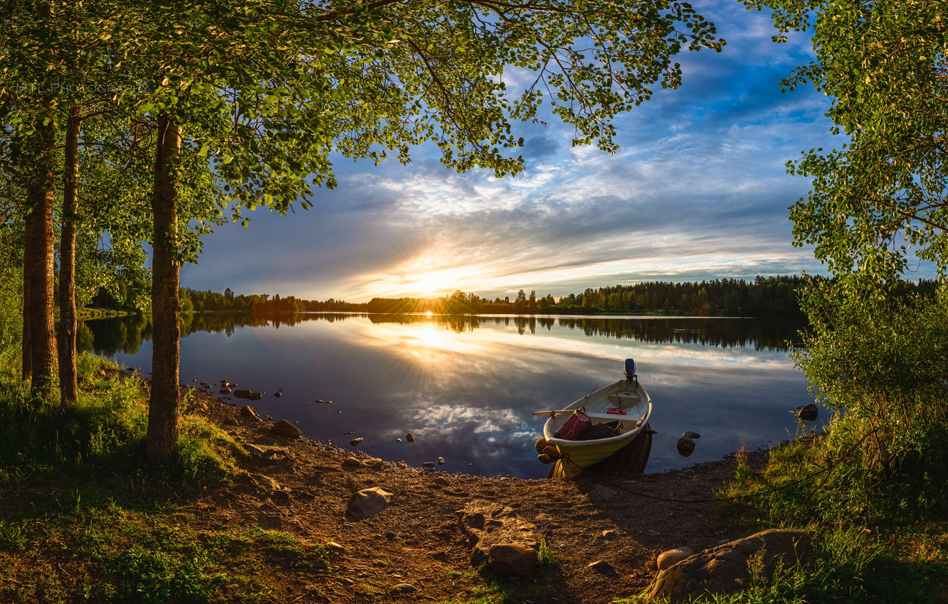 Photo wallpaper forest, summer, trees, sunset, river, boat, Finland, Finland, River Oulujoki, The Oulu River
