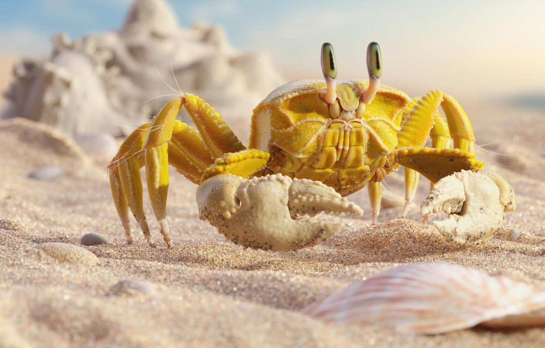 "Photo wallpaper sea, beach, summer, crab, art, crab, Mr ""Yellow"" Crab, Daniel Klepek"