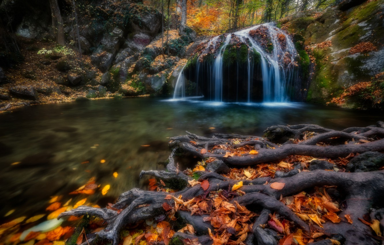 Photo wallpaper autumn, leaves, roots, river, waterfall, Russia, Crimea, fallen leaves, The Gorge Haphal, Waterfall Jur-Jur, The …