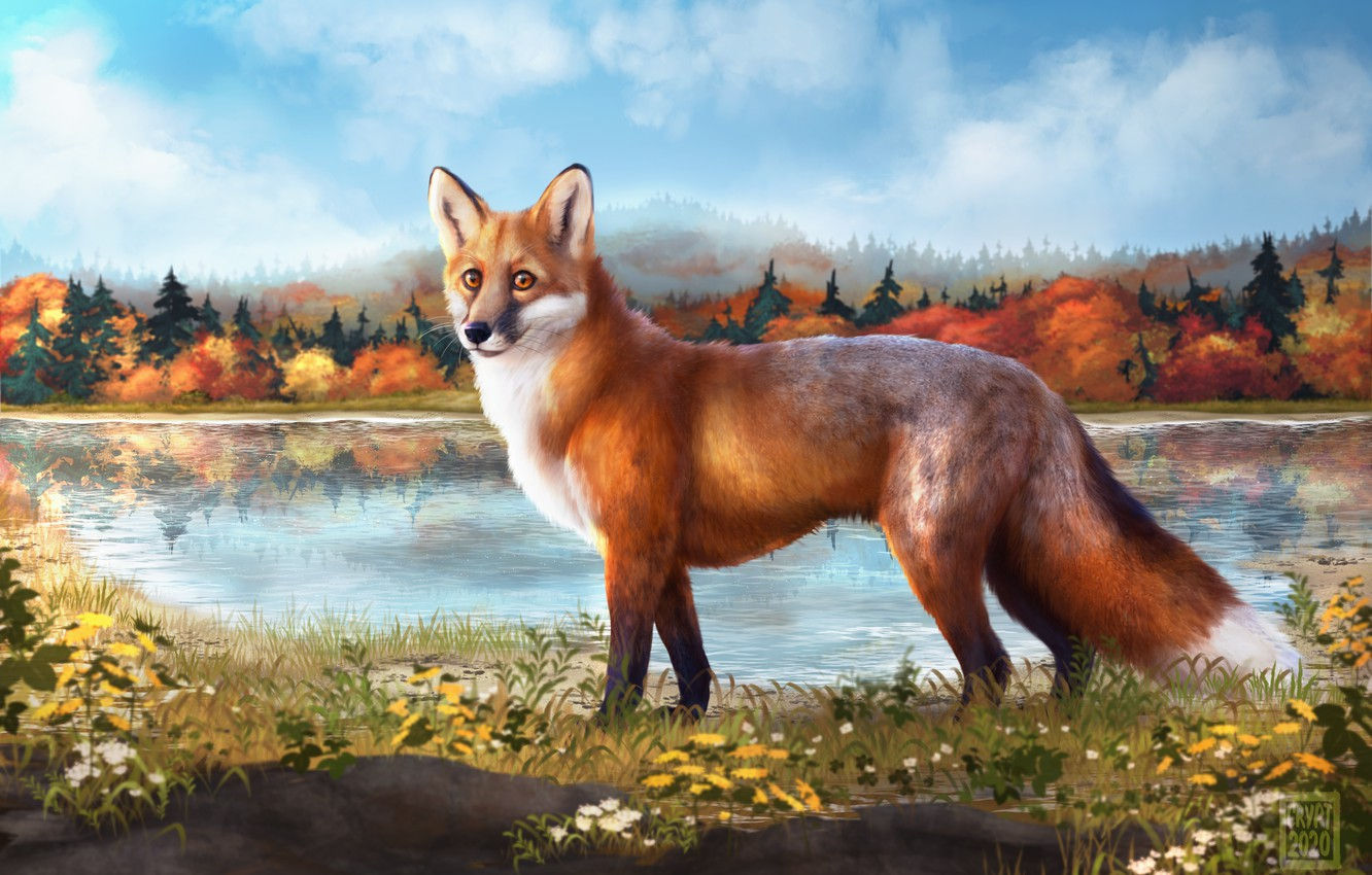 Photo wallpaper autumn, the sky, trees, nature, lake, Fox, Rinok, Cryptillian