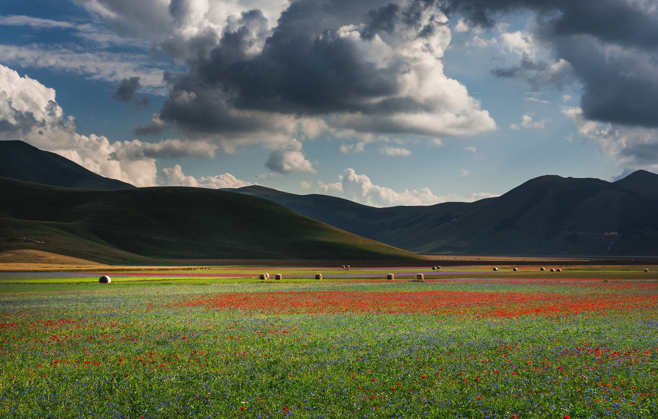 Photo wallpaper field, summer, the sky, clouds, flowers, clouds, Maki, meadow, blue, space, hay, Italy, red, bales