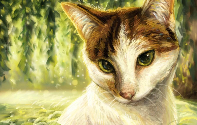 Photo wallpaper cat, leaves, nature