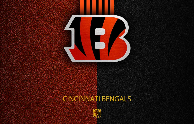 Wallpaper wallpaper sport logo NFL Cincinnati Bengals images