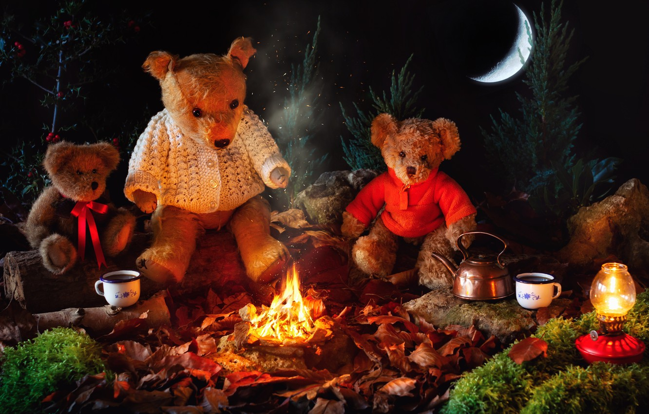 Photo wallpaper night, fire, toys, a month, kettle, bears, Cup, the fire, bears