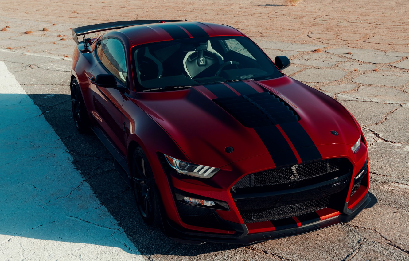 Photo wallpaper Mustang, Ford, Shelby, GT500, shadow, bloody, 2019
