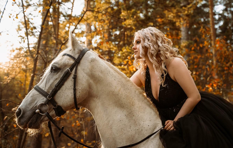 Photo wallpaper horse, dress, blonde, autumn forest
