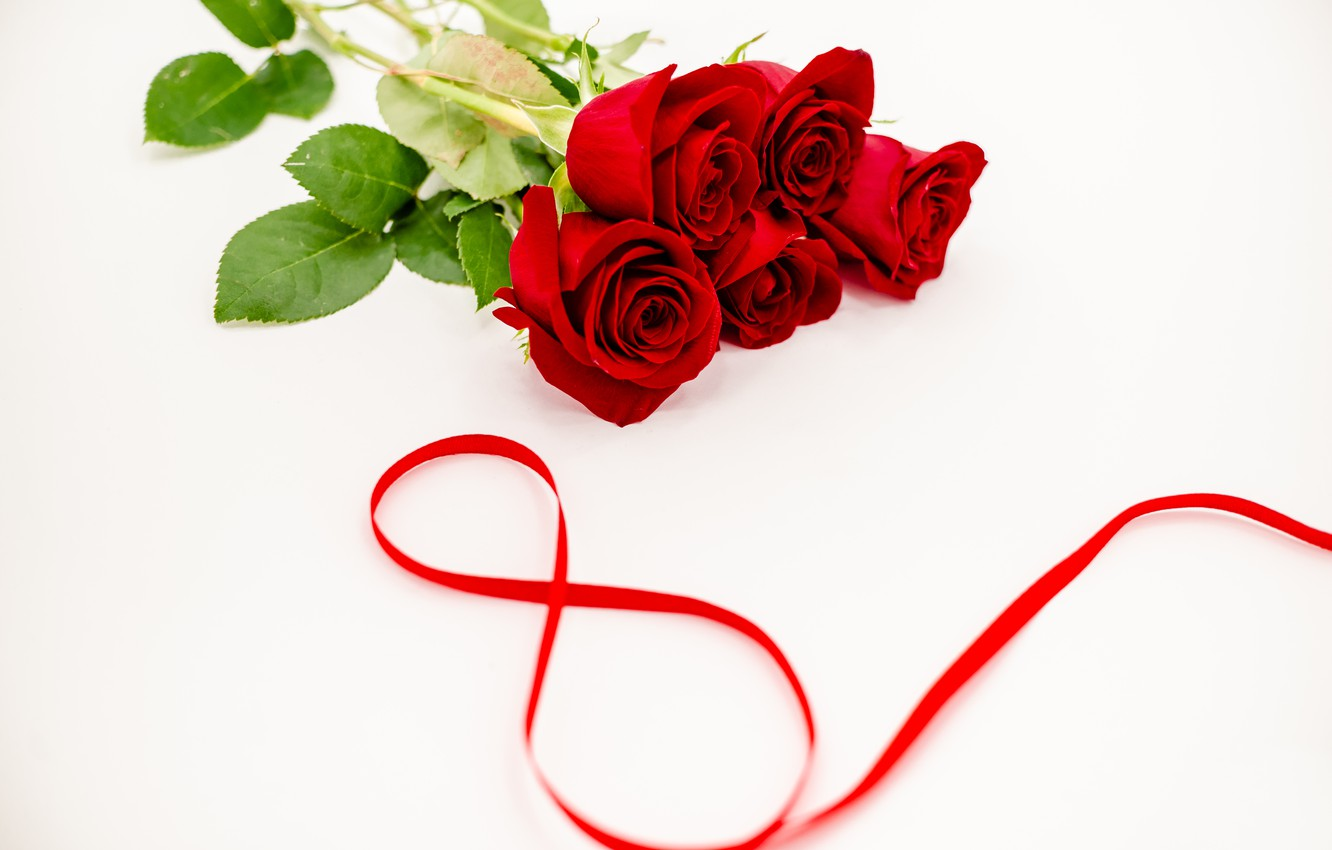 Photo wallpaper flowers, roses, tape, red, red, March 8, flowers, romantic, roses