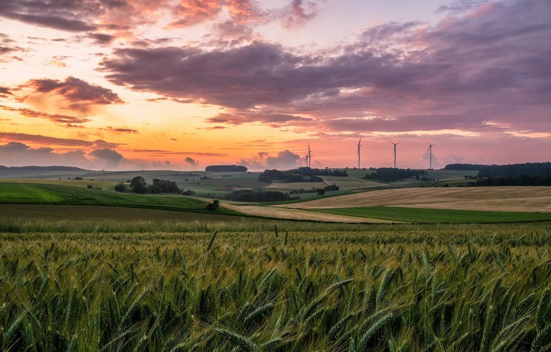 Photo wallpaper summer, sunset, nature