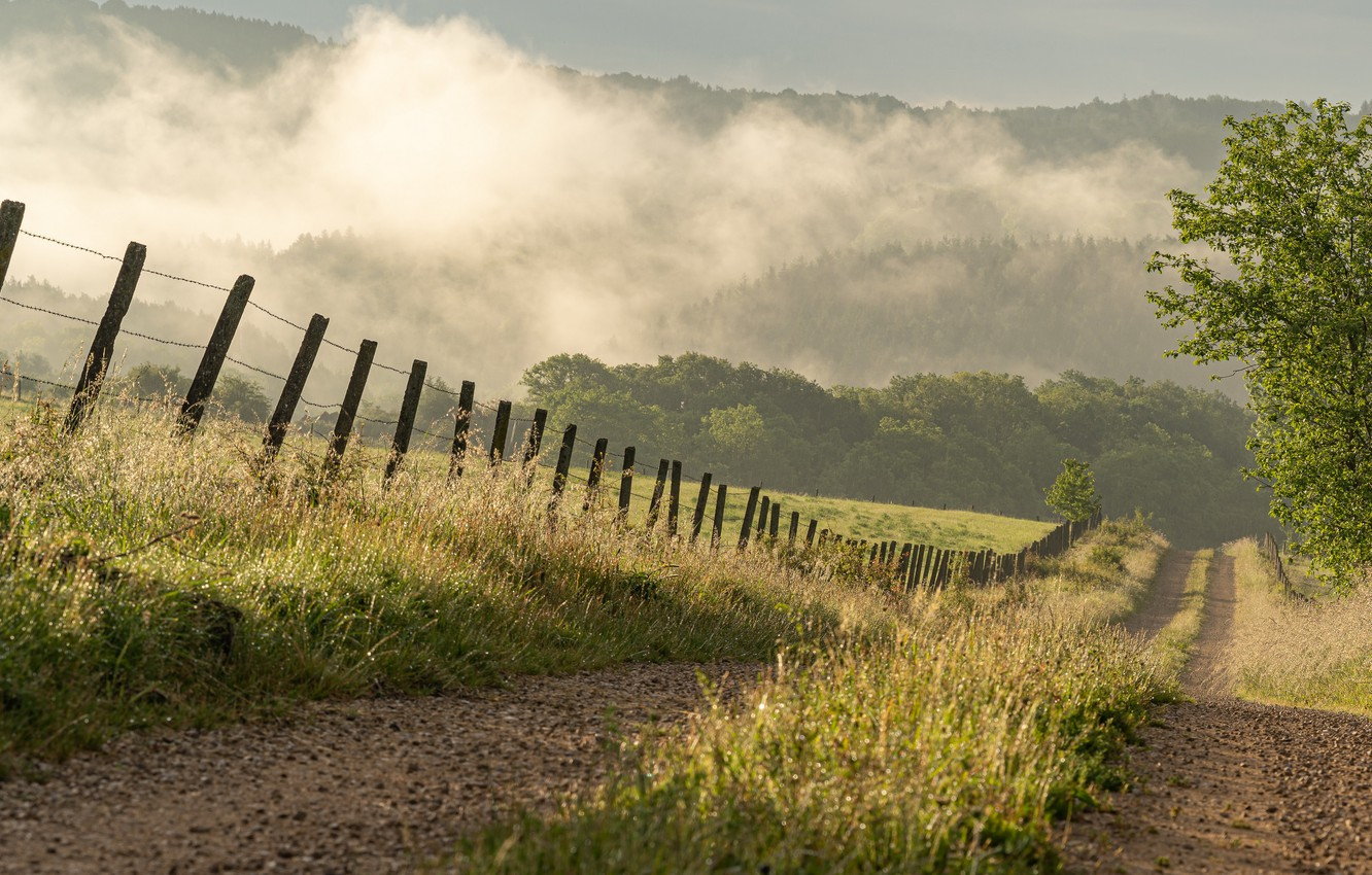 Photo wallpaper road, summer, fog, the fence