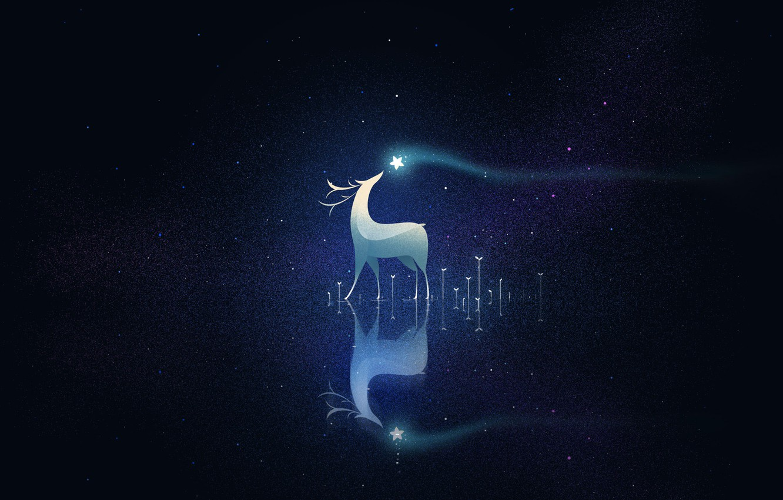 Photo wallpaper night, deer, a cluster of stars