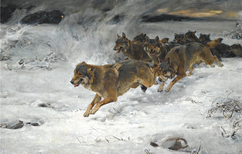 Photo wallpaper dogs, snow, dawn, pack, artist, Alfred Kowalski-Verush