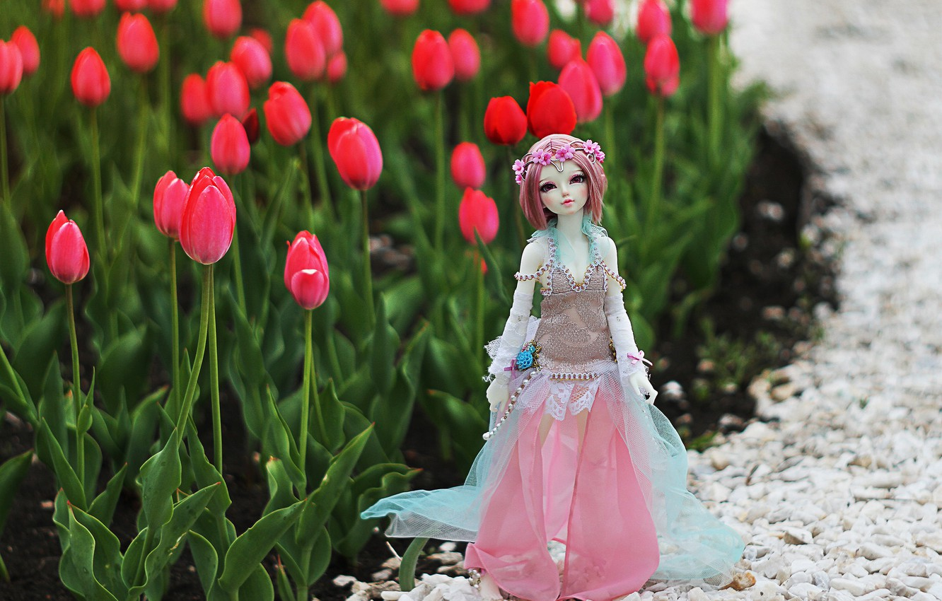 Photo wallpaper toy, doll, tulips