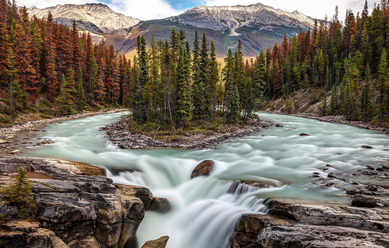 Photo wallpaper forest, trees, river, waterfall, Canada, Albert, Alberta, Canada, island, Jasper National Park, Jasper national Park, …