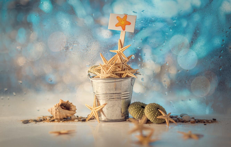 Photo wallpaper water, drops, plate, shell, bokeh, starfish, bucket