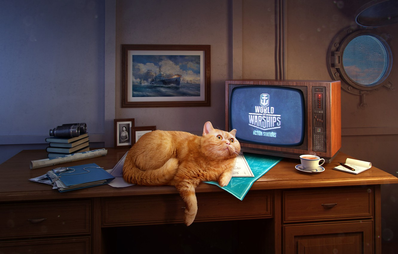Photo wallpaper The game, Table, Cat, Ship, The window, Wargaming, World of Warships, Cabin, Red cat