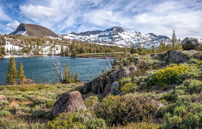 Photo wallpaper grass, landscape, nature, lake, stones, beauty, ruffle